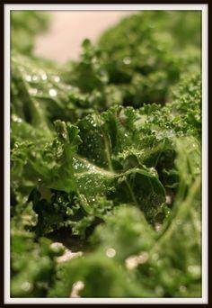 Desperate Gardener(is my favorite new blog): Kale Chips