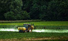 Sondage : Êtes-vous d'accord avec le gouvernement pour l'interdiction totale du Glyphosate ?