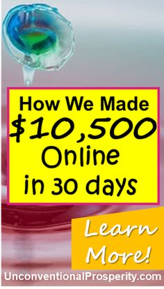 Check out how we made $10,533 online in just 30 days with almost no costs! Blogging is the BEST business model on the planet and the barrier for entry is so low. You can get started and make money online today!