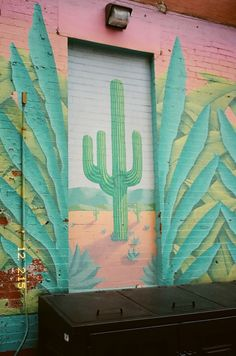 Hand painted cactus street art. South west.