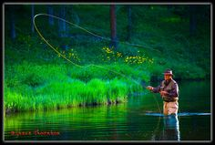 Fly Fishing in the C