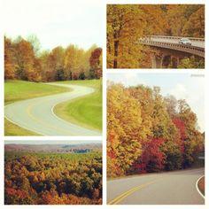 Natchez Trace in Franklin, Tennessee. http://dld.bz/NatchezTraceItin Download a FREE Natchez Trace itin & plan UR trip!