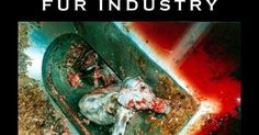 Defending Animals Online -Blogger Edition: The F-ing Fur Industry