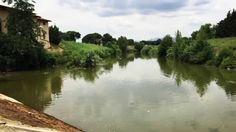 Una passeggiata sull'argine della Greve, uno degli affluenti dell'Arno. Siamo a Firenze.