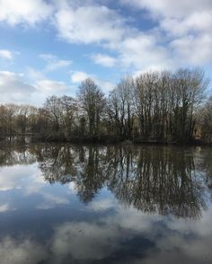 Sun is returning finally to create some wonderful reflections of naked trees and clouds... enjoy your weekend everybody! #waitingforspring #reflection_shotz #water_perfection #lakesideview #oldenburg  #meinniedersachsen #nature_skyshotz #whywelovenature #getoutthere #spaziergangamsee #meindeutschland #germanvision #reflection_perfection #nature_obsession_landscapes #wonderful_worldshots #happytrailz #followerfriday #loves_united_germany #fotofanatics_nature_ #fotofanatics_sky_ #sky_scapes…