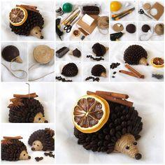 kávový ježko