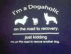 I'm a Dogaholic...on the way to rescue another dog.