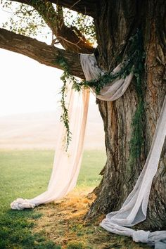 Incorporate the great outdoors on your wedding day with this simple yet chic nature-inspired feature backdrop.