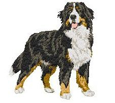 embroidery designs bernese mountain dogs | bernese body 01 bernese puppy body 01 bmd head 01 bmd head 02 bernese ...