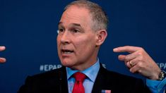 FOX NEWS: DC government joins Scott Pruitt pile on issues citation to landlord