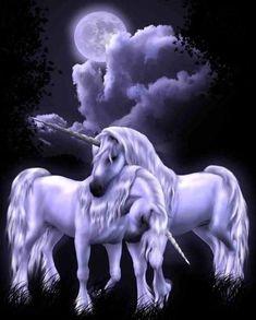 Fantasy Animals images Pegasus & Unicorn HD wallpaper and . Unicorn And Fairies, Unicorn Fantasy, Unicorn Horse, Unicorn Art, Fantasy Art, Magical Creatures, Fantasy Creatures, Beautiful Creatures, Gif Caballos