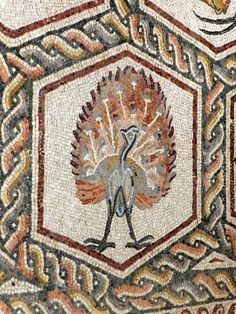 Lod Roman mosaic, peacock. http://helenmilesmosaics.org/mosaic-sites/lod-roman-mosaic/