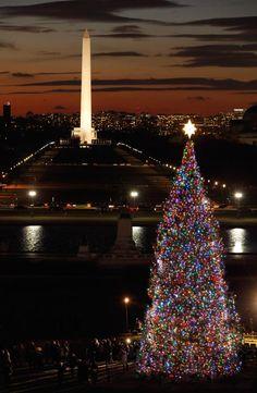 GLI ALBERI DI NATALE PIÙ BELLI DEL MONDO.  WASHINGTON DC, USA, MONUMENTO A GEORGE WASHINGTON, CAPITOLIO