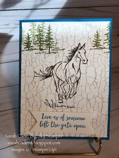 Big Sky Stampin': Let it Ride Butterfly Birthday Cards, Birthday Cards For Boys, Horse Cards, Crackle Painting, Paint Cards, Stamping Up Cards, Fathers Day Cards, Animal Cards, Big Sky