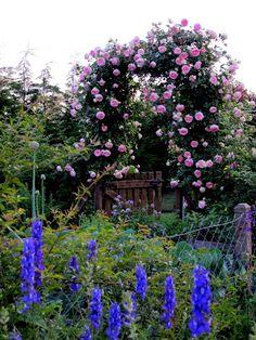 Huiben Arco de jard/ín resistente y duradero para flores y plantas trepadoras