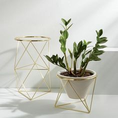 Eric Trine Octahedron Plant Holder - Copper | west elm