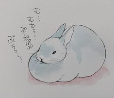 Twitter Bunny Drawing, Bunny Art, Cute Bunny, Animal Sketches, Animal Drawings, Beautiful Rabbit, Frog Art, Molang, Beautiful Sketches