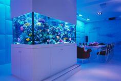 25 Rooms With Stunning Aquariums - Interior Design Ideas, Home ...
