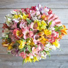 The Bouqs Volcano Collection Bold Deluxe Alstroemeria Bouquet