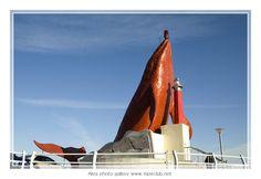 Whale lighthouse Jeongja, south Korea