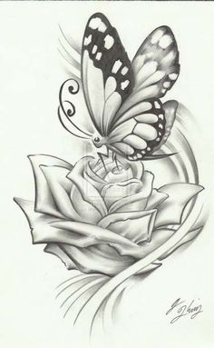 Beautiful pencil drawings of roses 1000 ideas about flower drawings Realistic Flower Drawing, Easy Flower Drawings, Pencil Drawings Of Flowers, Pencil Shading, Pencil Art Drawings, Art Drawings Sketches, Cool Drawings, Drawing Flowers, Pencil Sketching