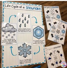 Large group—make this into a diagram to show the children the life cycle of a snowflake. Preschool Social Studies, Preschool Lessons, Preschool Crafts, Preschool Winter, Pre K Activities, Winter Activities, Pre K Lesson Plans, Snowflake Bentley, Snowflakes