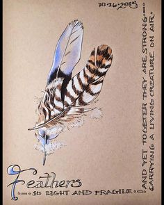 Ink study of feathers for #inktober2015. #ink #inktober #sketchbook #sketch #prismacolor #handwriting #feathers #philosophy | by artbeco
