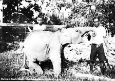 """Nicknamed the """"Animal Man"""", Basapa had his original zoo at 317 Serangoon Road. The animal lover saw it an opportunity to charge entrance fees to the increasing number of visitors, but his animal collection would grow so large that there were complaints to the Singapore Rural Board (abolished in 1965) about its stench, noise and overcrowding of animals. (Text from http://bit.ly/GElaqE)"""