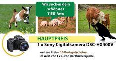 fotowettbewerbtiere - Fotowettbewerb - Landwirt.com Tier Fotos, Animals