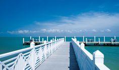 Photo Gallery for South Seas Island Resort in Captiva Island Florida Vacation, Florida Travel, Vacation Places, Vacation Destinations, Vacation Ideas, Resort Plan, Seaside Style, Captiva Island, Water Activities