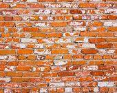 """23""""X36"""" Brick Springfield Rug Flooring Background or Floor Drop Photo Prop"""