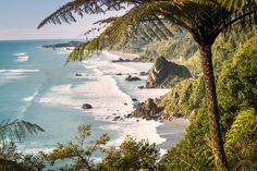 New Zealand Road Trip: 5 Days from Auckland to Wellington - Condé Nast Traveler New Zealand Beach, North Island New Zealand, South Island, Places To Travel, Places To Go, Beach Town, Vacation Destinations, Night Life, Countryside
