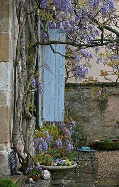 Spring in Provence