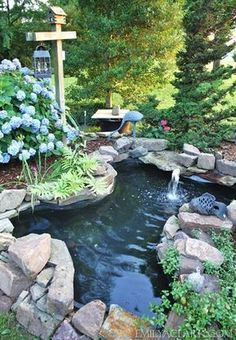 Bassin d'eau dans le jardin