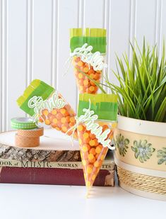 Use the We R Memory Keepers Photo Sleeve Fuse tool to create some fun carrot treat bags for Easter. Protein Diet Plan, Balloons And More, Custom Planner, We R Memory Keepers, Easter Treats, Treat Bags, Diy Party, Handmade Crafts, 3 D