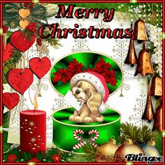 A Puppy s Christmas Christmas Images, Christmas And New Year, Winter Christmas, Christmas Ornaments, Digital Paper Free, Xmas Greetings, Friends Gif, Cute Dogs, Gifs