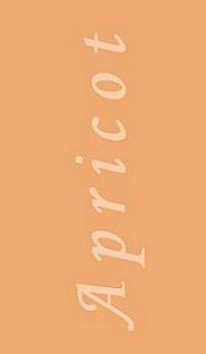 Peach Fuzz, Peach Orange, Light Orange, Color Trends, Color Combos, Color Collage, Peach Blossoms, Change Is Good, Color Shades