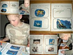 Swimming Creatures Lesson 4 experiment: Aquatic Herps ***Masking tape to measure turtles on carpet,label 8 types of sea turtles***