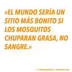 Frases graciosas: mosquitos