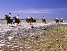 Buenos dias! Que mejor manera de comenzar el día que con esta hermosa vista! #Margarita #TurismoFelizViaje #felizviajecom #islademargarita #venezuela #agenciadeviajes #travelagent #turismo #travel #travelgram #turism #igers #mytravel #destination #discover #photooftheday #picoftheday #like4like #igersvenezuela #instagood #travelling #nature #vacaciones #adventure #happy #lovetravel #traveladdict #destinos #instatrip by felizviajecom