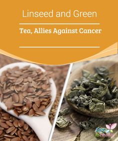 Linseed and Green #Tea, Allies Against Cancer   Linseed and #green tea are allies against #cancer, one of the most worrisome and recurrent #illnesses of the century.