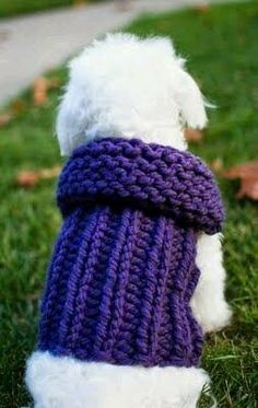 I would like to make this in crochet. Free Knitting Pattern - Ribbed Sweater Dog Vest from the Pets Free Knitting Patterns Category and Knit Patterns Knitted Dog Sweater Pattern, Dog Coat Pattern, Knit Dog Sweater, Sweater Knitting Patterns, Dog Sweaters, Loom Knitting, Free Knitting, Ribbed Sweater, Knit Patterns