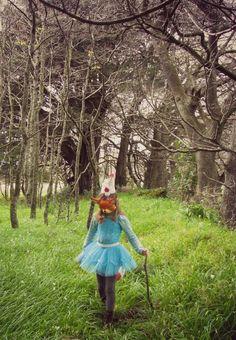 Party fox in the woods - Heart Felt