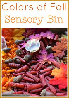 This sensory bin for preschoolers is great for exploring the colors of fall! The beautiful hues are so much fun to explore and work with! Fall Sensory Bin, Toddler Sensory Bins, Sensory Tubs, Sensory Boxes, Sensory Play, Autism Sensory, Sensory Diet, Autumn Activities For Kids, Fall Preschool