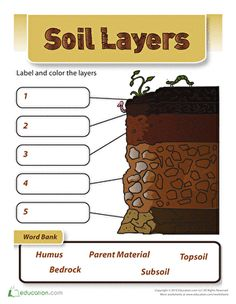 Layers of soil get the dirt worksheets layering and for Soil layers worksheet