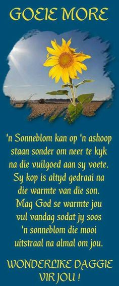 Goeie more Jesus maats. Good Night Quotes, Good Morning Good Night, Good Morning Wishes, Lekker Dag, Blessed Week, Evening Greetings, Afrikaanse Quotes, Heaven Quotes, Goeie Nag