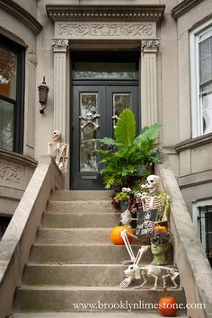 Welcome to Prospect Dark Diy Halloween Costumes For Kids, Halloween Activities, Easy Halloween, Halloween Decorations, Driveway Landscaping, Driveway Ideas, Spooky Decor, Local Parks, Exterior