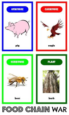 Food Chain War - free printable card game