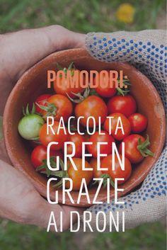 pomodori - oggi coltivazioni green grazie ai droni