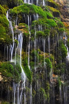 That's just beautiful Beusnita Waterfall, Cheile Nerei Beusnita Nature Park, Romania Beautiful Waterfalls, Beautiful Landscapes, Parc National, National Parks, Places To Travel, Places To See, Places Around The World, Around The Worlds, Wonderful Places